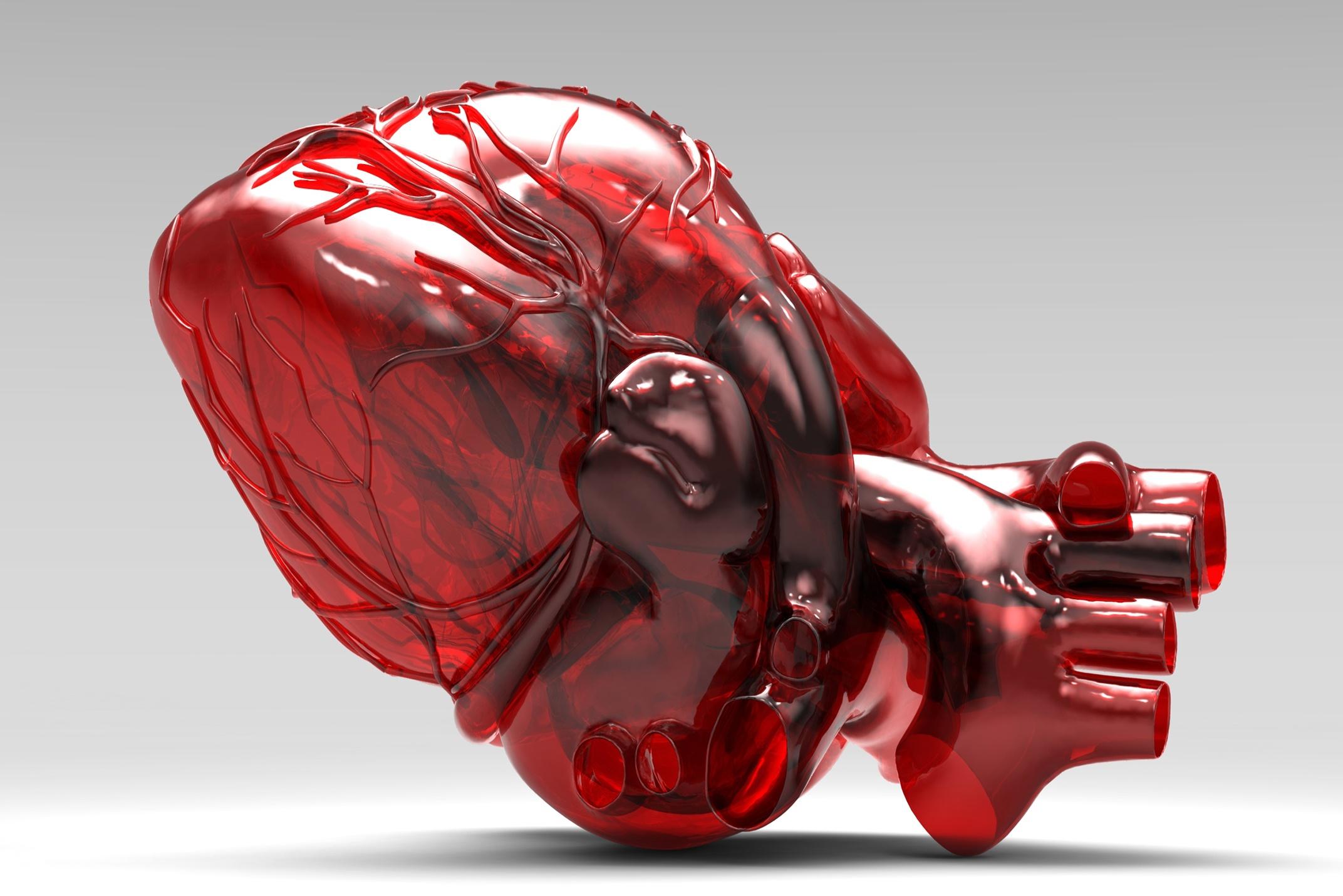 Resveratrol é mais Eficaz que a Quercetina na Função Endotelial e na Inflamação Sistêmica em Pacientes com Doença Arterial Coronariana