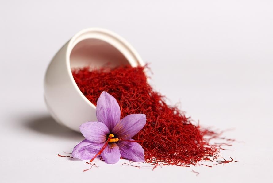 Saffron na Fibromialgia