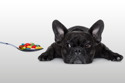 Oportunidade de negócios na manipulação veterinária
