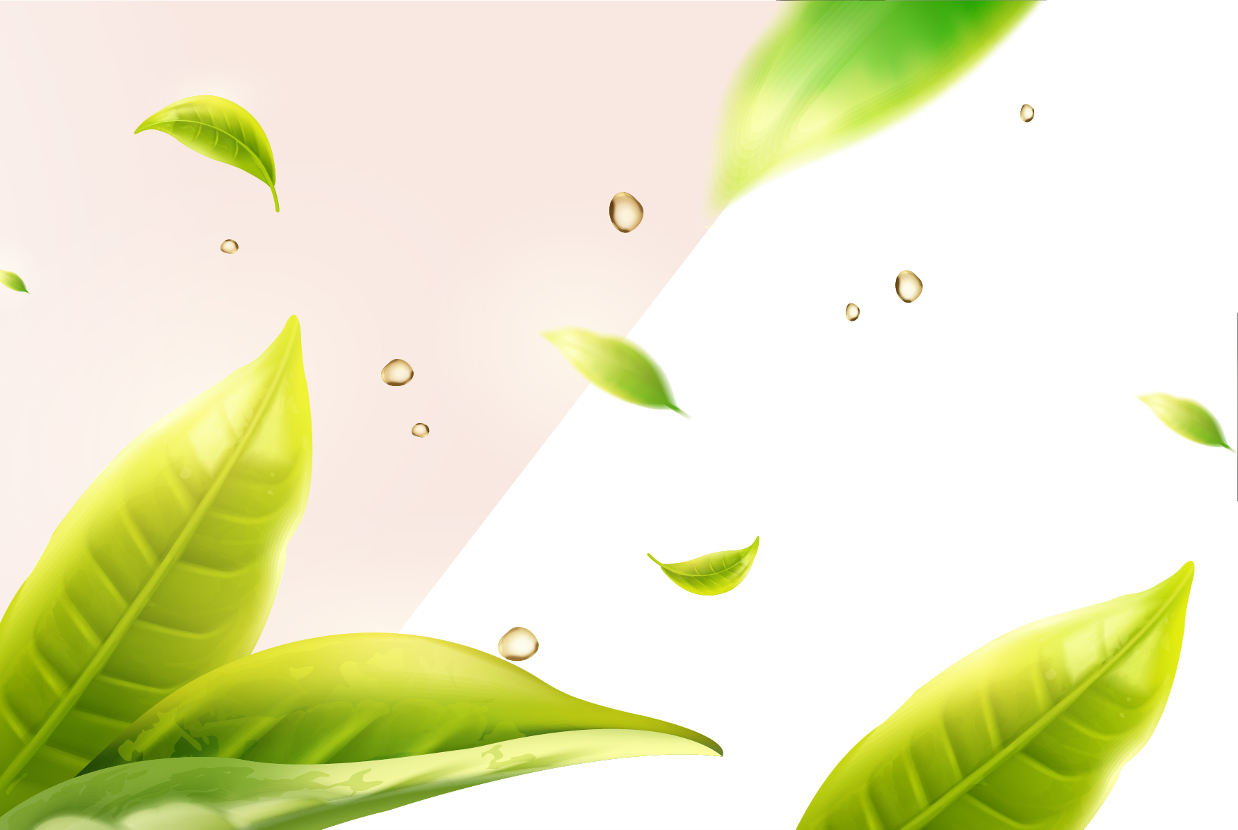 """Oportunidade para as farmácias de manipulação: pesquisa mostra que consumidor valoriza """"produto verde"""""""